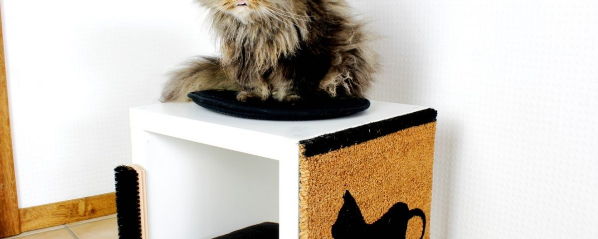Kallax-Regal-von-Ikea-Katzenbaum