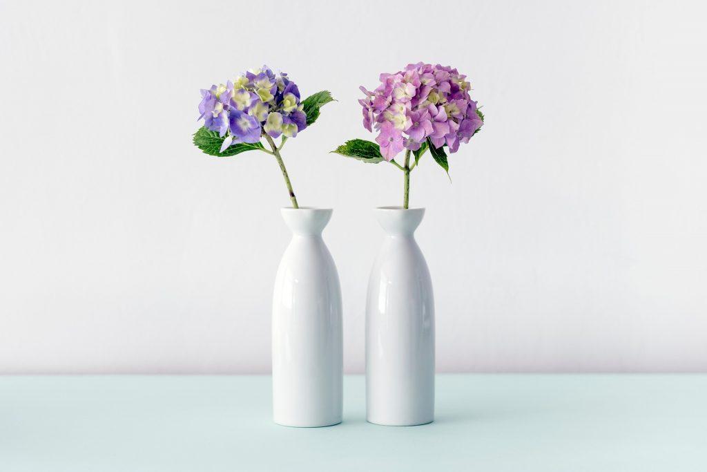 Violett-Farbe-des-Jahres